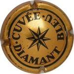 Capsule CUVEE DIAMANT BLEU HEIDSIECK-MONOPOLE 255