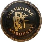 Capsule CHAMPAGNE AMBONNAY P P&F PAYELLE Père et Fils 540