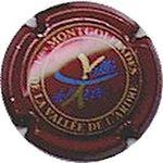 Capsule 1ères MONTGOLFIADES DE LA VALLEE DE L'ARDRE SALMON 1047