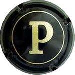 Capsule P WEINGUT WERNER PFLEGER 493